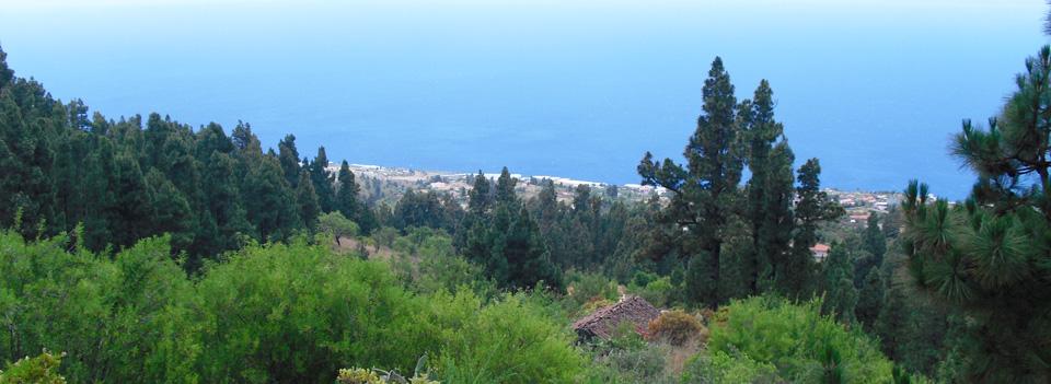 Disfrute de las mejores vistas de La Isla Bonita